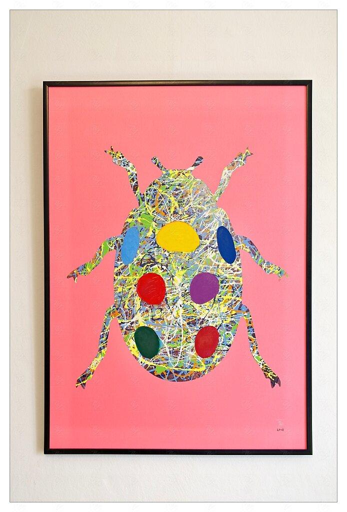 Slunéčko - The Ladybug